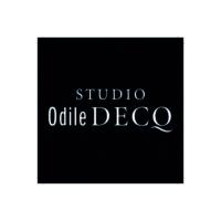 ODILE DECQ photo